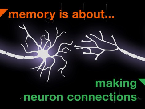 Memory is About Making Neuron Connections