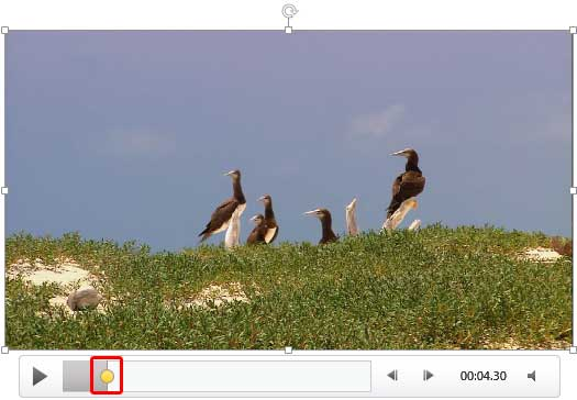 how to add video to powerpoint 2013