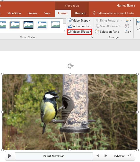 Video Effects in PowerPoint 2016 for Windows