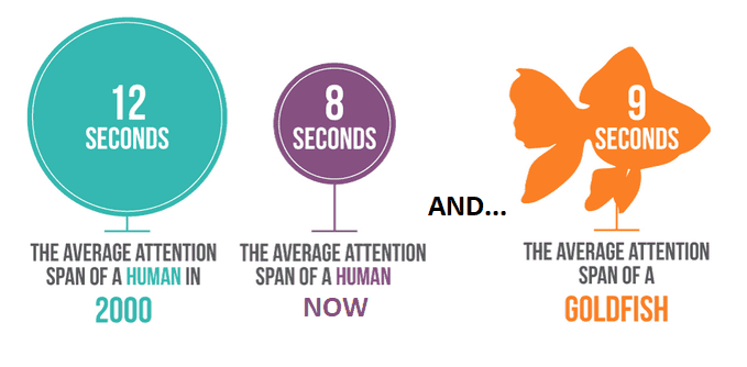 Human vs Goldfish Attention Span Research