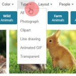 Bing Images Search by Type