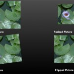 Resize, Rotate, and Flip Pictures in PowerPoint Online